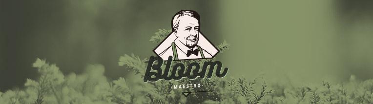 trabajo_destacado_bloom