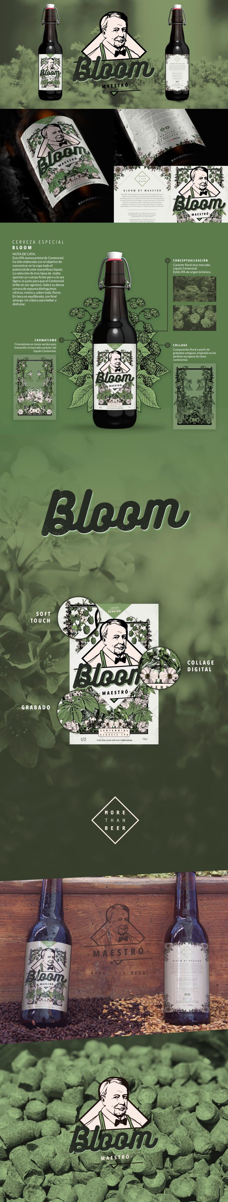 Bloom Maestró
